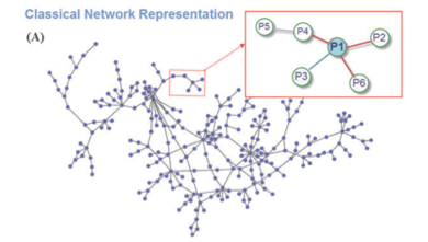 Structural PPI networks